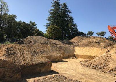 Site Prep (Alta Vista)