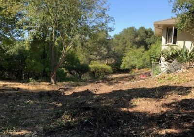 Demolition (Alta Vista)